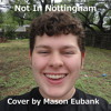 Not In Nottingham by Roger Miller(Ukulele and bass cover by Mason Eubank)