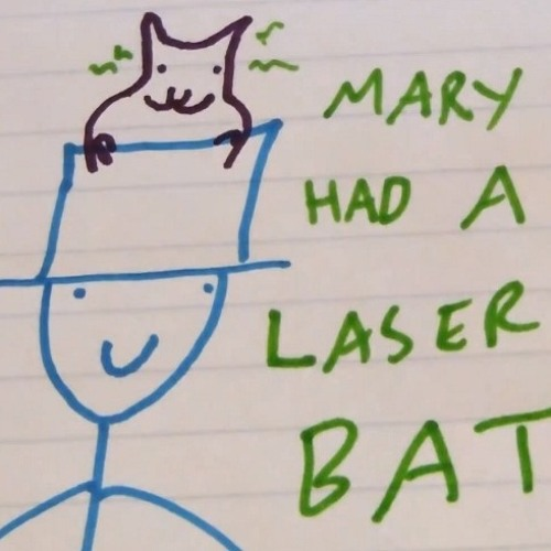 Mary Had A Laser Bat