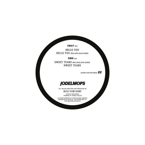 Rich vom Dorf - Hello You(Mollono.Bass-Remix) AckerDub022 - Jodelmops EP - snippet