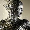 Metamorphosis (Instrumental)DOWNLOAD!