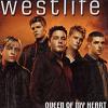 Queen of My Heart - Westlife Cover