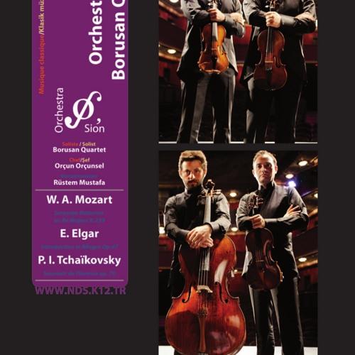 Orchestrasion & Quartet BORUSAN -04 2013- 6