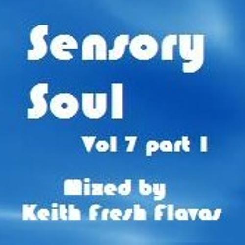 Sensory Soul Vol 7 - Part 1 (Day Mix)