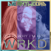 DIZ IS WHY I'M HOT (WRKD Remix) - Die Antwoord
