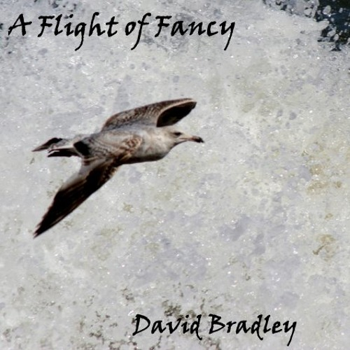 Dave Bradley - A Flight of Fancy