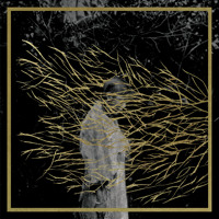 Forest Swords - The Weight In Gold