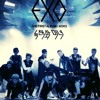 EXO -Wolf (Korean Ver. cover)