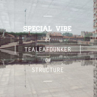 Special Vibe #1 by Tealeafdunker on Structure