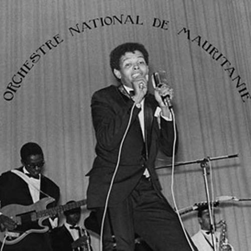 l'orchestre national de mauritanie - l'orchestre national de mauritanie (album preview)
