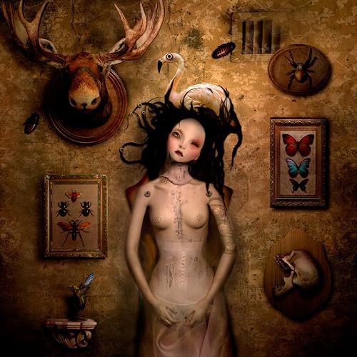 Harpy Magic by Maya Petrovna