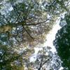 Thursday Hideout_ Goldene Bar_ 040713_ Campfire Mix