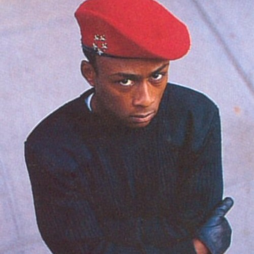 Ambitions Of Professor Griff