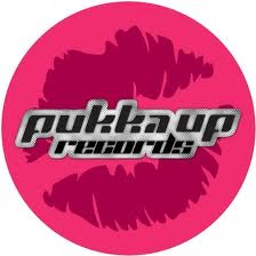 Ridney ft. Terri B - What Can I Do (Rise Up)(Ted Nilsson Remix) [PUKKA UP] TEASER