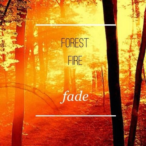 Forest Fire by Fade