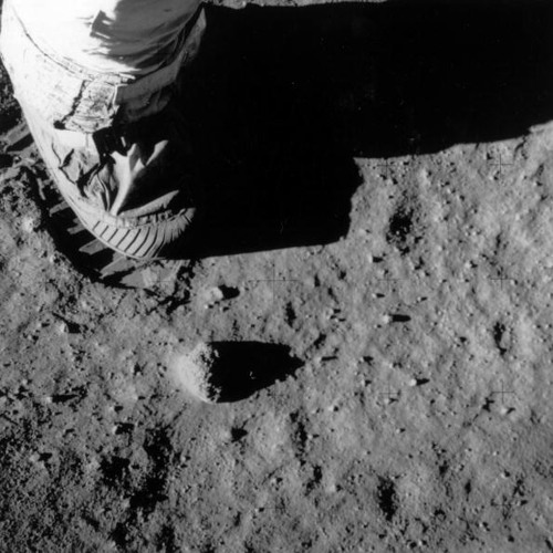 Landing a National Park on the Moon - The Dinner Party Download