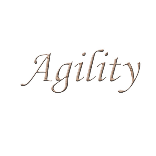 Agility (Original Mix)