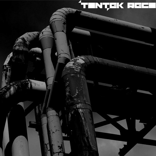 Teo Brothers - Skinholes (R.Gomez rmx) out soon Tontek Records