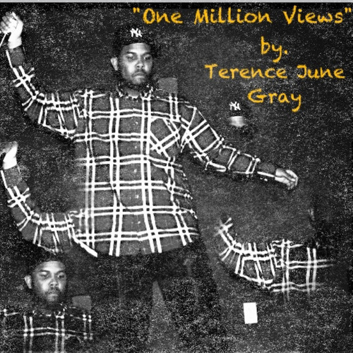 One Million Views by. Terence June Gray