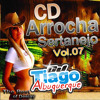 Levemente Alterado (Arrocha  Sertanejo Vol.07)