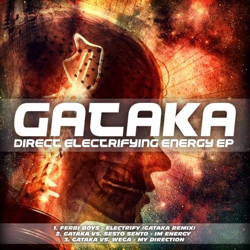 Electrify (Gataka RMX)