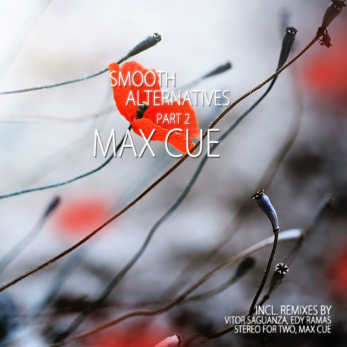 Places Of Worship (Max Cue's Indistinct Remix) <<>>