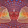Forest Raga (borracheira remix) :) (native american flute : aviv agami )