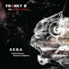 Franky B aka Cryptic Monkey - Kindly Bloodline (interlude)