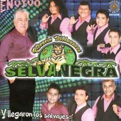 Selva Negra - Popurrí salvaje(2)