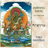 The Praises To The 21 Forms Of Tara