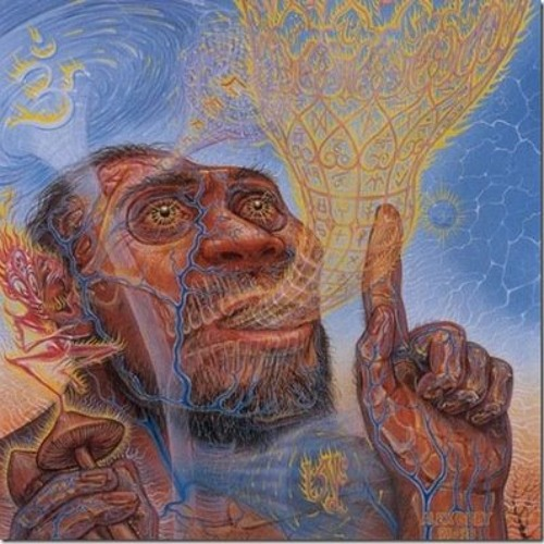 Stoned Ape (Prod. Monty Datta)