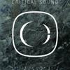 Critical Sound | Sheffield | Tramlines | Kasra | Emperor | RinseFM Live Broadcast |19.07.13
