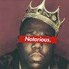 The Notorious B.I.G. - Juicy (Woody Remix) ft. Vanessa Pritchard