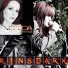 Rinsdark [Cover Song] | Epica - Never Enough