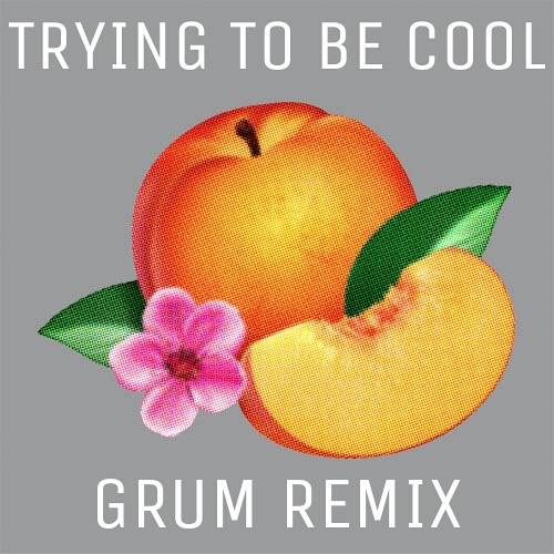 Phoenix - Trying To Be Cool (Grum Remix)