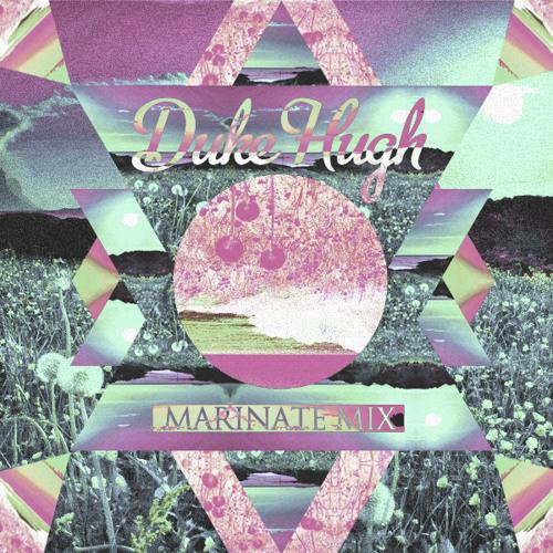 Duke Hugh - Marinate Mix