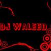 Ajab Ghazab Love - Boom Boom - DJ Waleed MIX