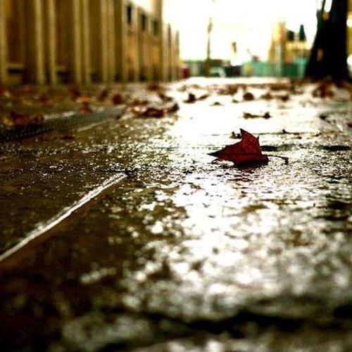 Baciare il tuo paese desolato, che è da sempre il mio (Alessandro Mazzà)