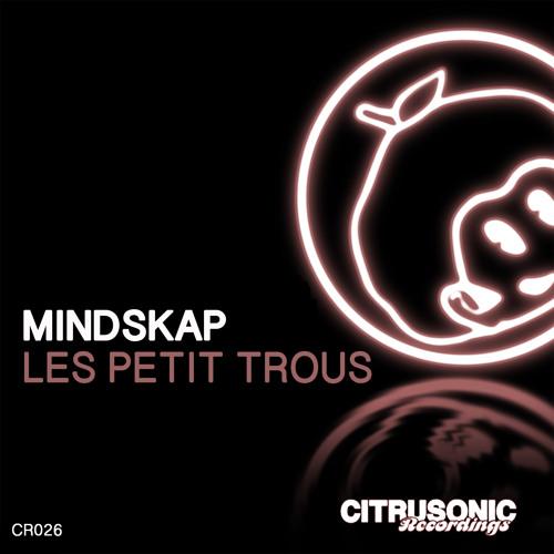 Mindskap - Les Petit Trous (Extended mix)