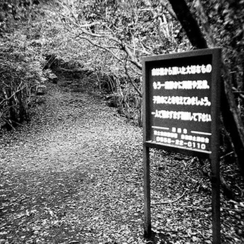 The Forest Of Aokigahara