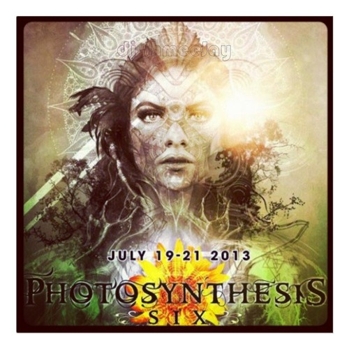 Photosynthesis Festival 6 (Live)