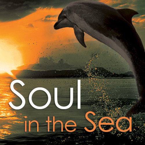 BFM Interview: Soul in the Sea