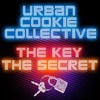 Urban Cookie Collective - The Key vs MR-T ( BootMash )