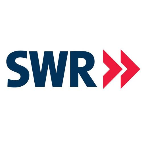 Die Humanisten Baden-Württemberg – Beitrag im SWR am 14. Juli 2013