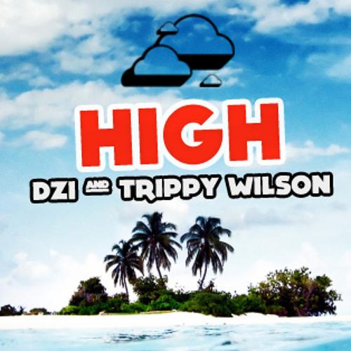 DZI ft. Trippy Wilson - HIGH