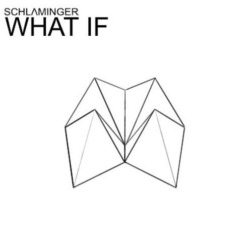 SCHLΛMINGER - What if {Melancholie und Liebe - jul13}