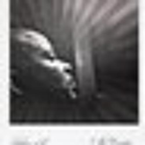 (Wtom World Music presents)Lyrical-Kung-Fu...feat Shawn Lat...Prod by Thomas Vieu