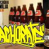 Achorate (Aconcagua Familia) Beat Erk 2013