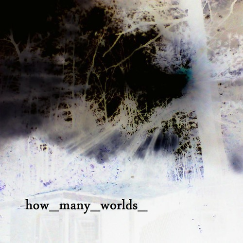 How Many Worlds - Not Worth Moving