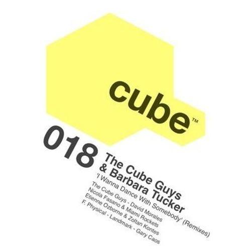 The Cube Guys ft. Barbara Tucker - I Wanna Dance With Somebody (Landmark Remix) [Cube]