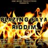 11 - Leo Tan - Too Much Takers // Blazing Faya Riddim (2013) [GMC Music Prod.]